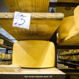 Una institución referente de la quesería artesanal uruguaya en tiempos de crisis